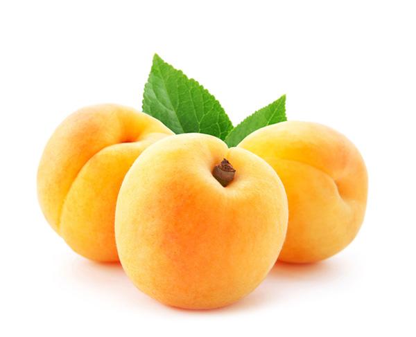 Olio di albicocca usato nei cosmetici naturali e vegan Defa Cosmetics