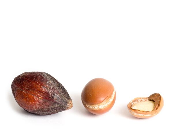 Olio di argan usato nei cosmetici naturali e vegan Defa Cosmetics