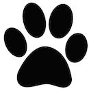 Defa Cosmetics azienda Cruelty Free NO test sugli animali